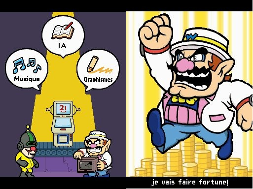 Wario Ware : Do It Yourself !